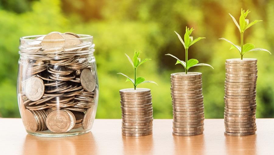 Rahaa läpinäkyvässä purkissa ja kasoissa, joista kasvaa vihreitä versoja