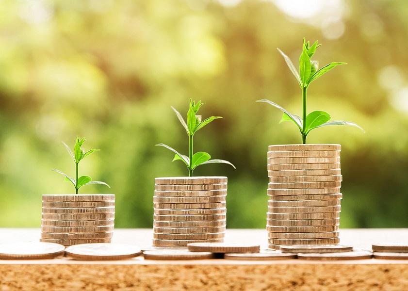 Pinoja kolikoista, joista kasvaa vihreitä versoja. Korkoa korolle -efekti laittaa rahasumman kasvamaan itsestään.